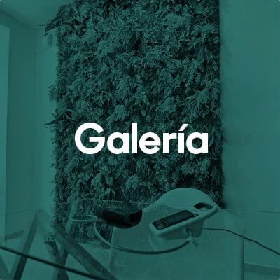 Farmacias en Valencia, Galeria